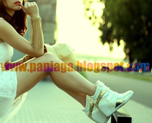www.paniaga.blogspot.com