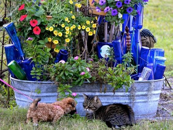 Tanya From Blondeponders Garden And Duck Tales, Very Effectively Uses Blue  Bottles Along With Her Galvanized Tub