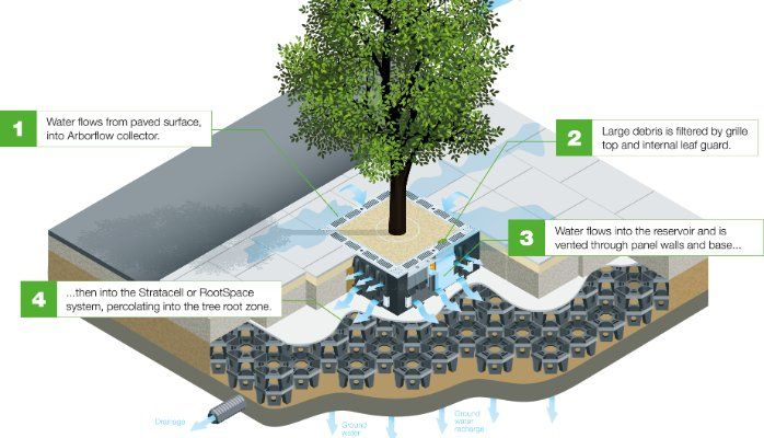 The Importance Of Urban Trees In Stormwater Management 9th St Pinterest Architecture