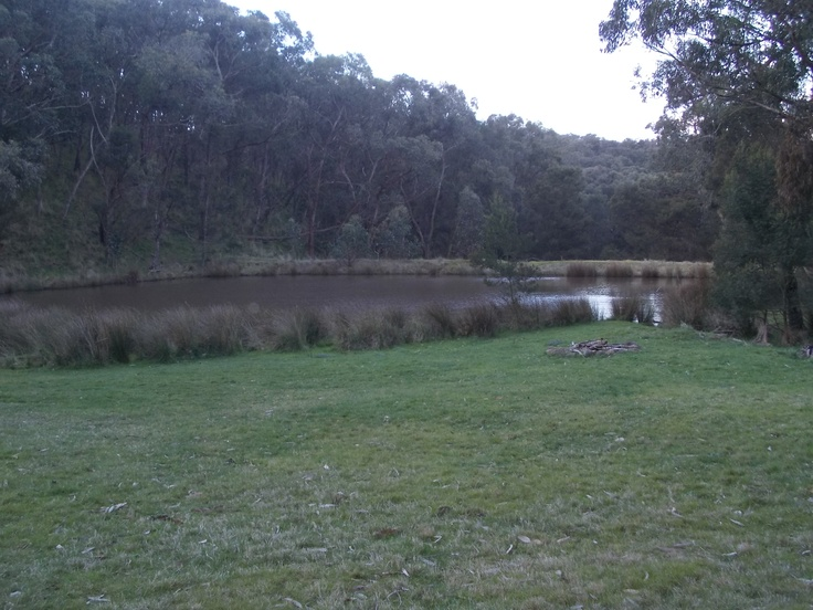 picnic by the dam just past the bushlands :)