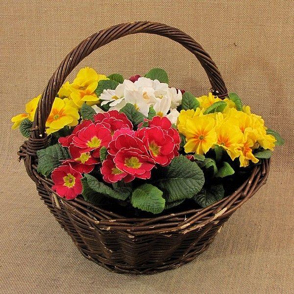 Wiklina (Wicker) - Kosz na kwiaty - średni