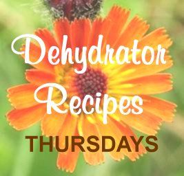 101 Dehydrator Recipes