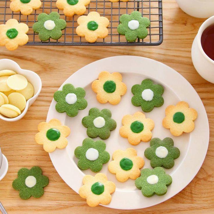 お花のクッキーを作りました なんだかこの季節は抹茶のお菓子を食べたくなるので抹茶とプレーンの2種で  型抜きクッキーが綺麗に焼けると嬉しいですよね しかもサクサク食感に仕上げるため作り方や焼き方を工夫してみました  今回のレシピもゼクシィキッチンで動画にて公開中です ゼクシィキッチン marimoでWeb検索してみてください また感想教えてくださいね