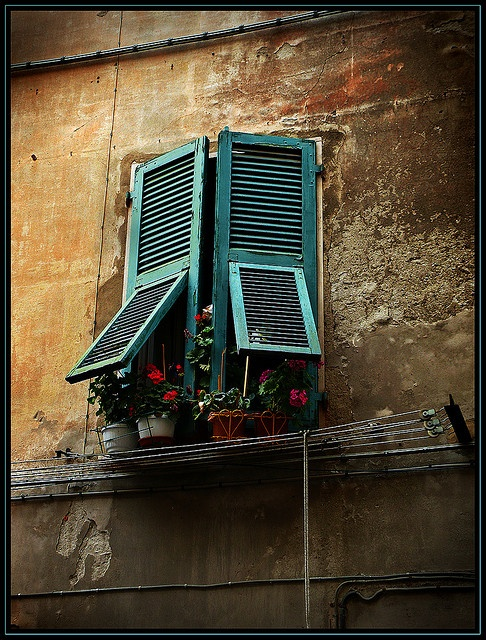 Sarzana, Italy: window still