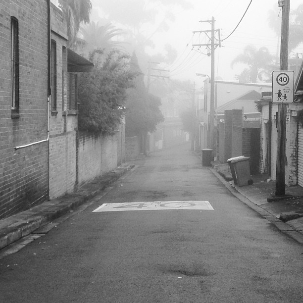 Black and white shot of street with fog - Centennial Park, NSW #blackandwhite #centennial #park #sydney #fog #street #streetscape #photography