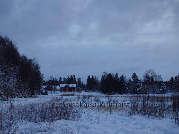 Talo pellon laidalla. Talvi.
