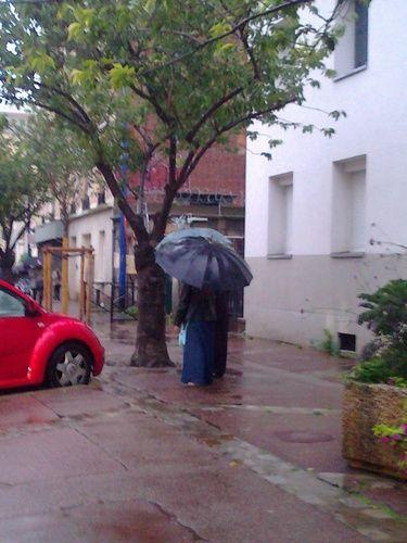 près des arbres sous la pluie (battante) : Retour de piscine, il pleut à grands seaux  [jeudi 4 octobre 2012 08:31, Clichy la Garenne rue de Neuilly] | gilda_f