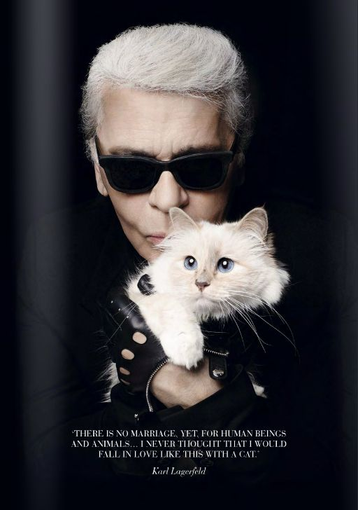 Carl Lagerfeld and his cat Choupette, she is cross breeding between siamese and other breeds.