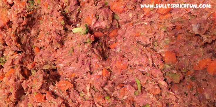 Low starch, grain-free homemade raw food recipe for dogs