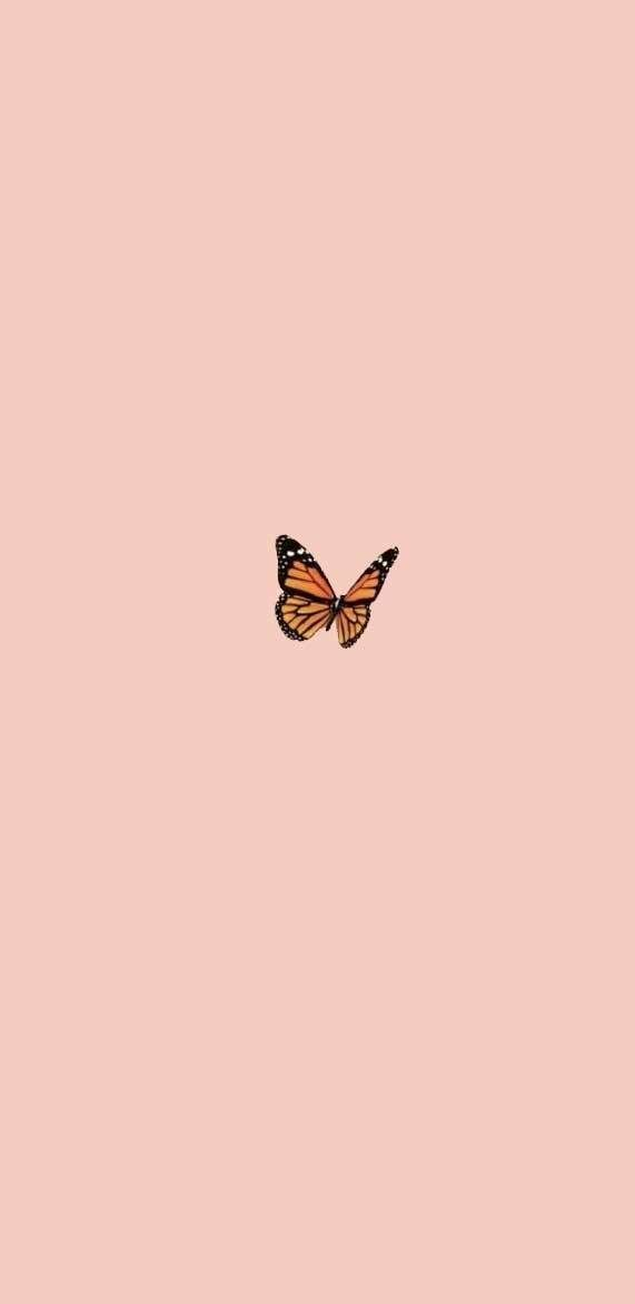Typografi Simple Iphone Wallpaper Butterfly Wallpaper Iphone Pretty Wallpaper Iphone