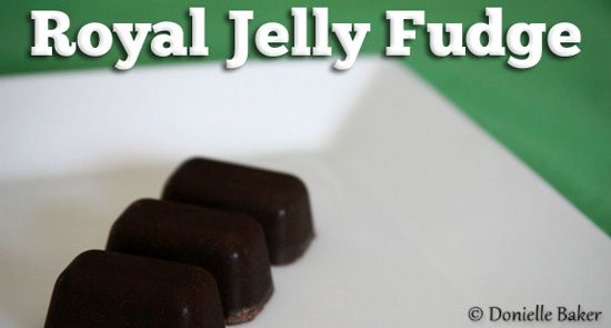 The benefits of royal jelly for your fertility, and how to make a healthy freezer fudge with it.