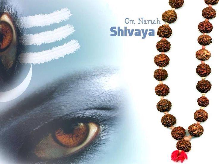 Shiv bhole