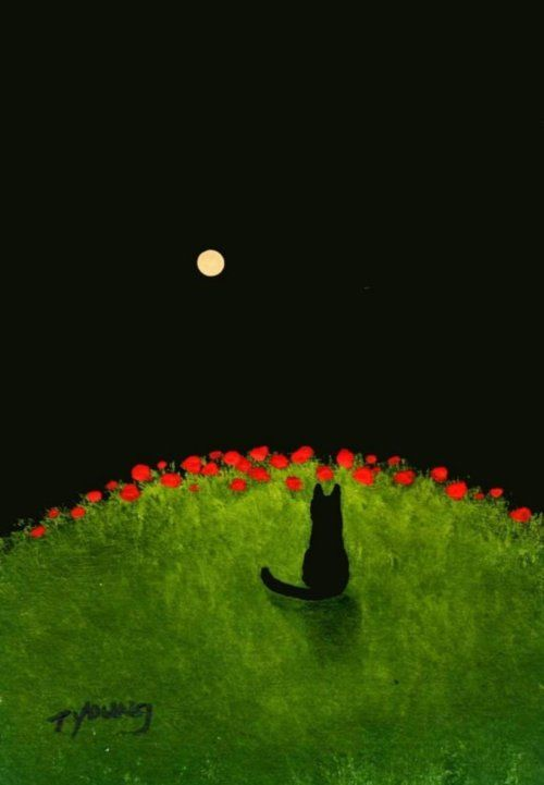 Black Cat POPPY HILL art print by Todd Young via Etsy