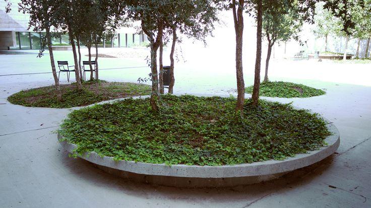 Can Framis by BAAS Architecture/ Jordi Badia + EMF Landscape Architecure/ Marti Franch