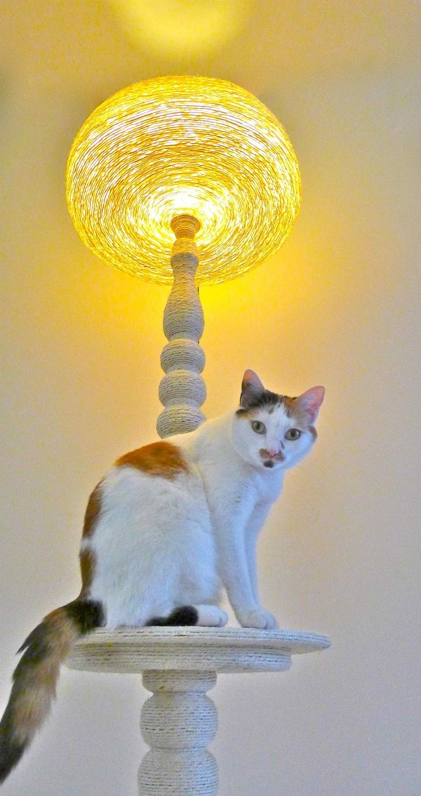 old lamp covered in sisal rope keeps your kitty scratch happy