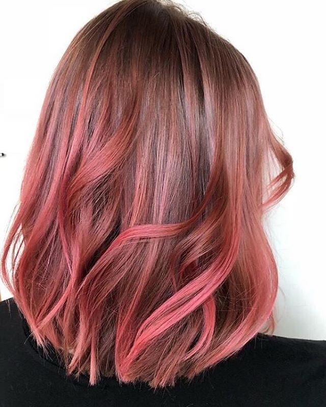 Overtonecolor Emma Ebrown Applied Rose Gold For Brown Hair To Natural Strands That Were Slightly Li Hair Color Rose Gold Brown And Pink Hair Gold Hair Colors