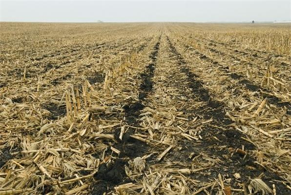 New Protocol Recommendations for Measuring Soil Organic Carbon Sequestration