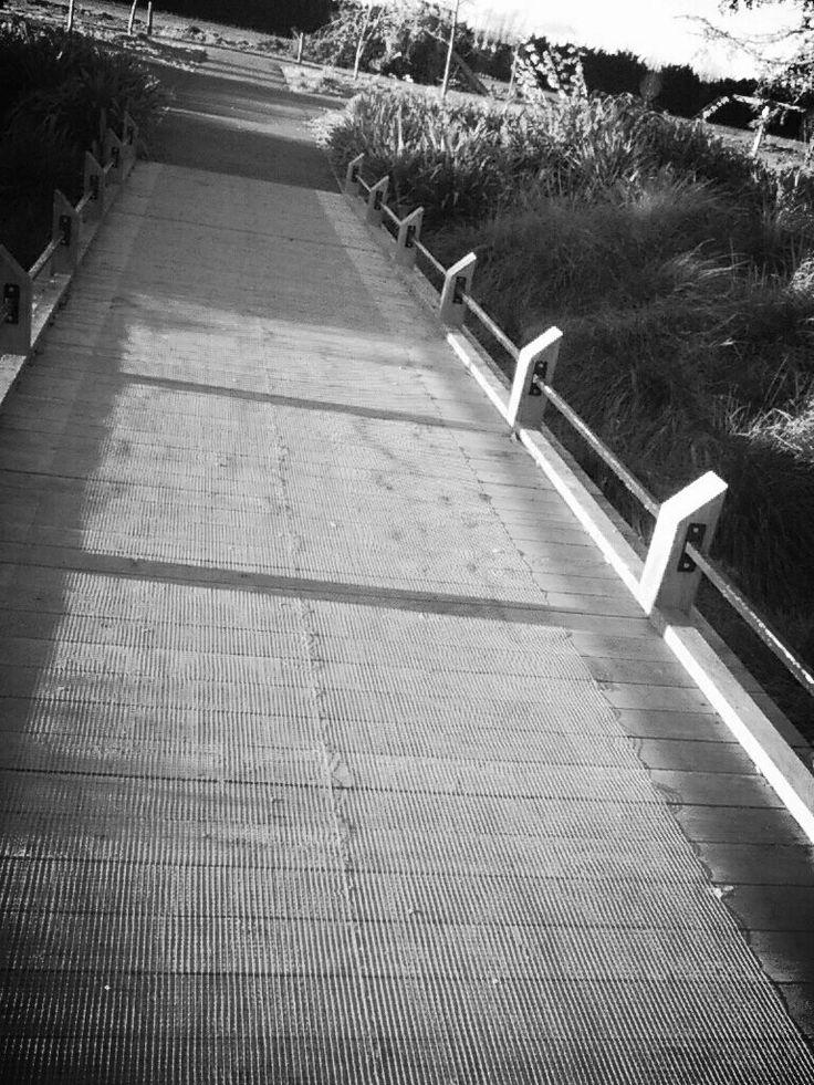 A little bridge.... Could trolls be under it?