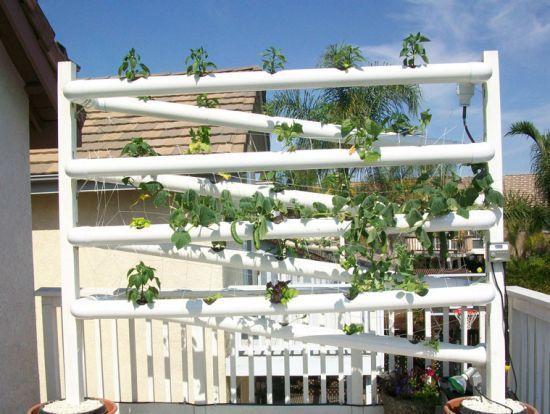 @dakwaarde via Twitter - voorbeelden van stadslandbouw op daken - daklandbouw