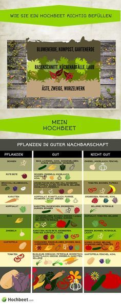 Was kann ich zusammen mit anderen #Gemüsearten anpflanzen? Eine interessante Grafik über #Gemüse und Co.