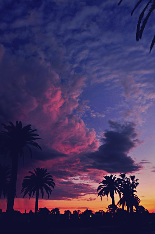 run women Isa Menami on Sunset forever  Sunsets Sky and Tropical