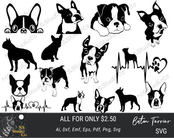 After Purchase You Will Receive Every File That You See On Mail Photo In Next Formats Svg Grea Boston Terrier Puppy Boston Terrier Tattoo Boston Terrier Dog