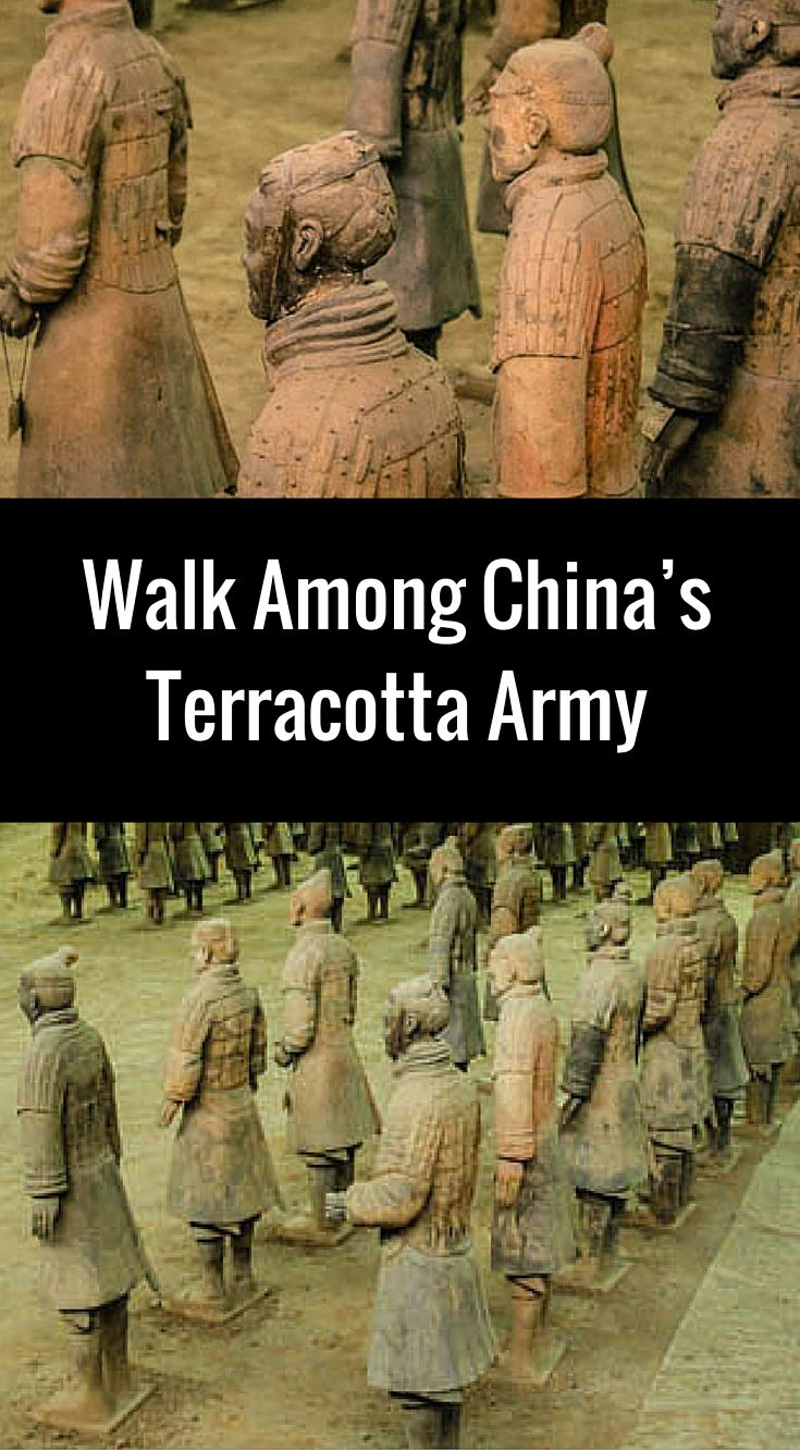 terracotta soldiers essay