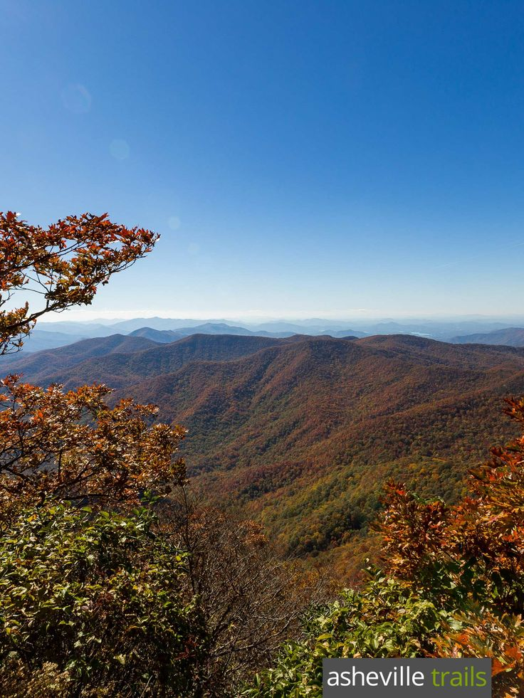 Hike the Appalachian Trail to Standing Indian Mountain in western NC, catching stunning summit views