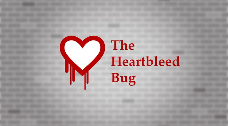 The heartbleed bug had the most impact on open SSL networks. Here are some tips to quickly address the heartbleed bug in your IT network.
