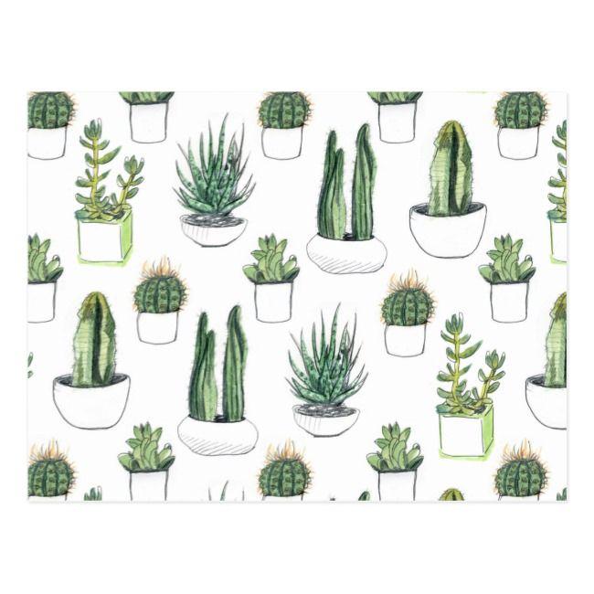 Watercolour Cacti Succulent Postcard Zazzle Com Tumblr