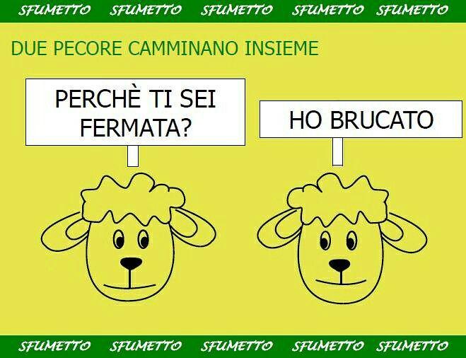 Www.sfumetto.net ☺😊😀😁😃😄#barzelletta #barzellette #vignetta #vignette #ridere #umorismo
