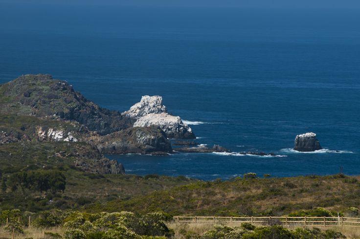 Vista desde las Parcelas de Rocas del Mar en Los Molles, V region, Chile