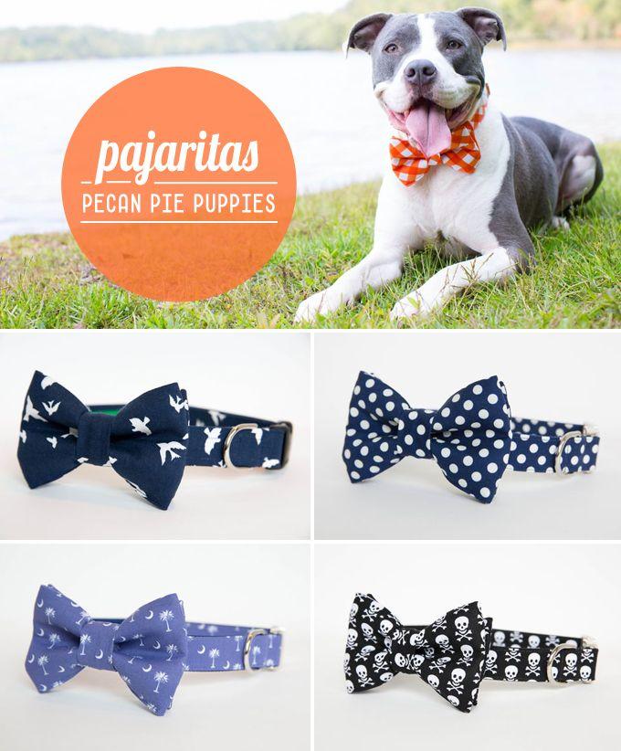 Complementos para mascotas y proyectos DIY para que nuestros pequeños mejores amigos también sean bonitistas