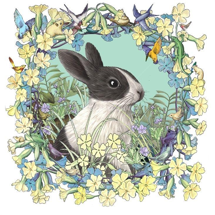 Realistic rabbit illustration - photo#20