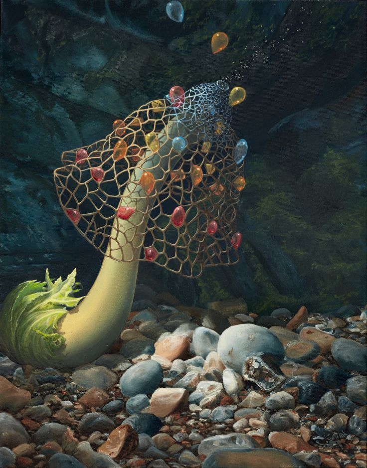 Wish Seeder by Manon Potvin - Magical Realism - Surreal