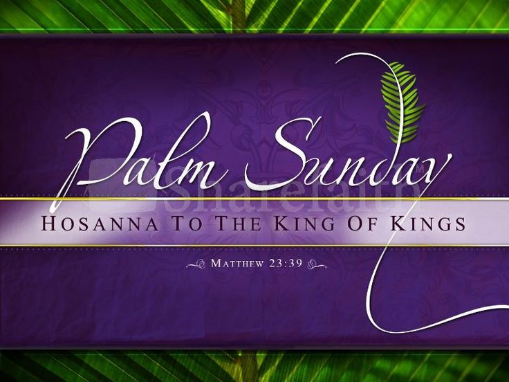 Blessed is He who comes in the name of the Lord, Hosanna to the King of Kings.