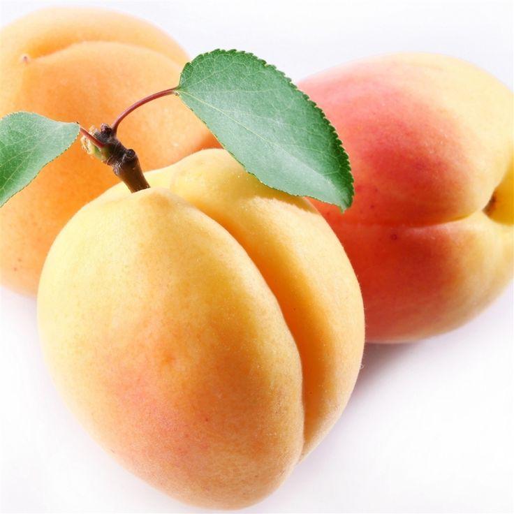 Apricot Fruit Branch #Retina #iPad #Air #wallpaper