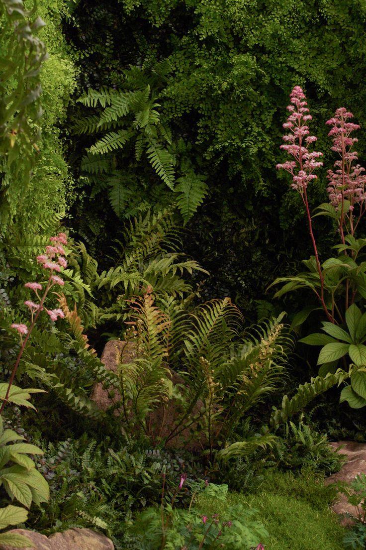 Tamata Garden RHS Chelsea Flower Show 2011 View More