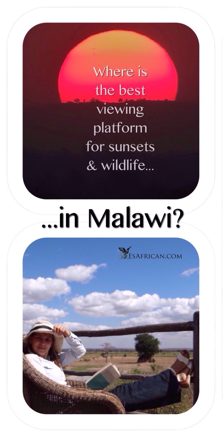 #Malawi has some of the most picturesque and tourist-free #safari destinations in Africa. It also has magnificent #sunsets. But where is the best viewing-platform for a COMBINATION of #wildlife & sunsets? Of course, we have the answer...