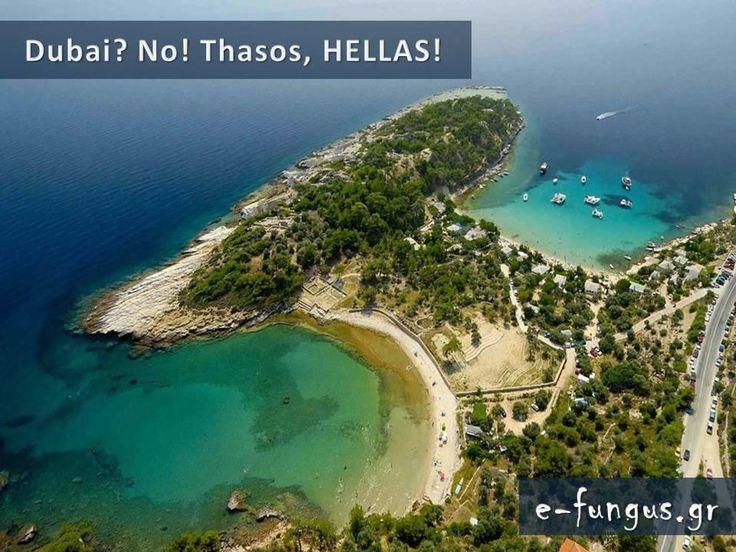 Ο Παράδεισος επί της Γης πραγματικά υπάρχει και βρίσκεται φυσικά στην Ελλάδα.    Όλα τα είδη φύσης, βουνά, δάση, ποτάμια, νησιά, παραλίες, πέτρες, ηφαίστεια, θάλασσες! Όλα διαφορετικά, όλα υπέροχα!  Εδώ είναι μερικές φωτογραφίες από τις χιλιάδες που θα