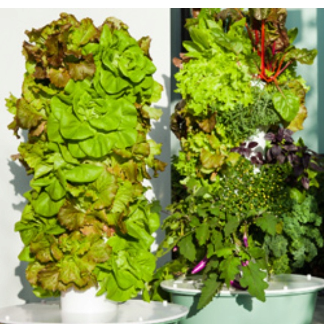 24 Best Images About Aeroponics Tower Garden On Pinterest