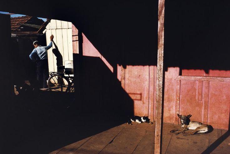 Paraguay / Alex Webb