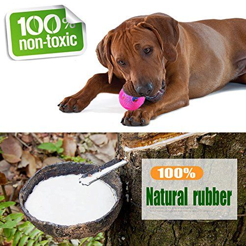 Top 10 Dog Toys For Large Dogs Aggressive Chewers Of 2020 Best