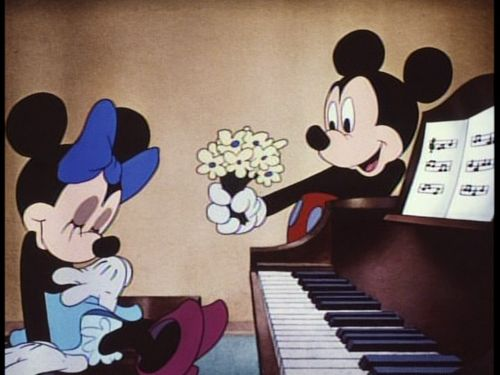 The love of Mickey and Minnie house