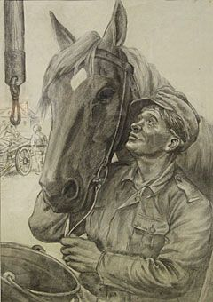 Lindeberg - Aseveli-hevonen / Brother in arms horse - Finland - Finnish horse