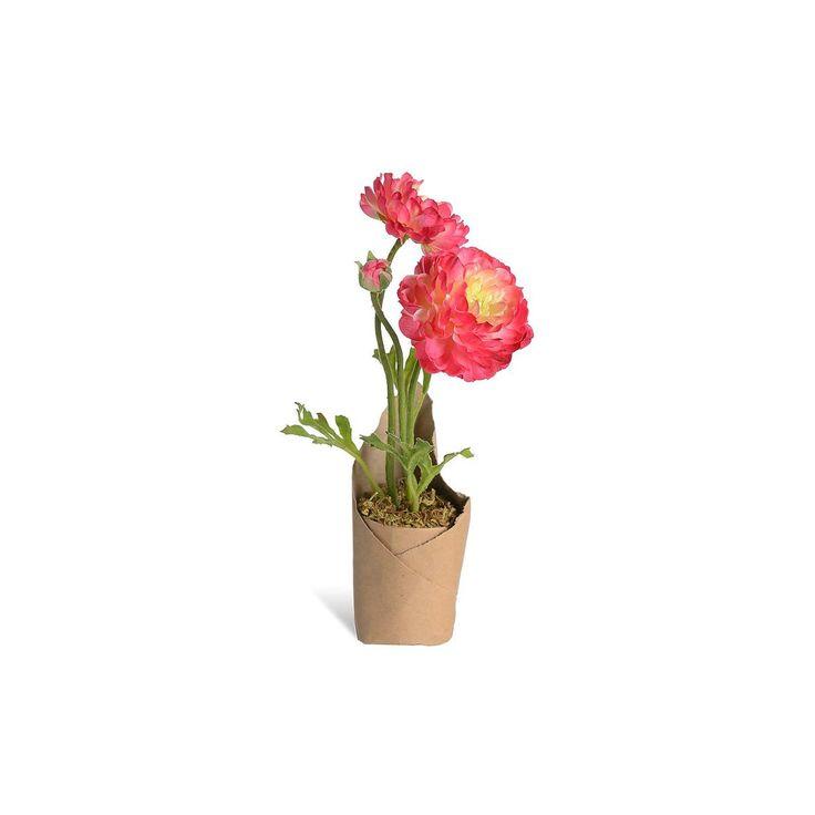 Ranunculus in paper bowl, H: 22cm, pink, pink