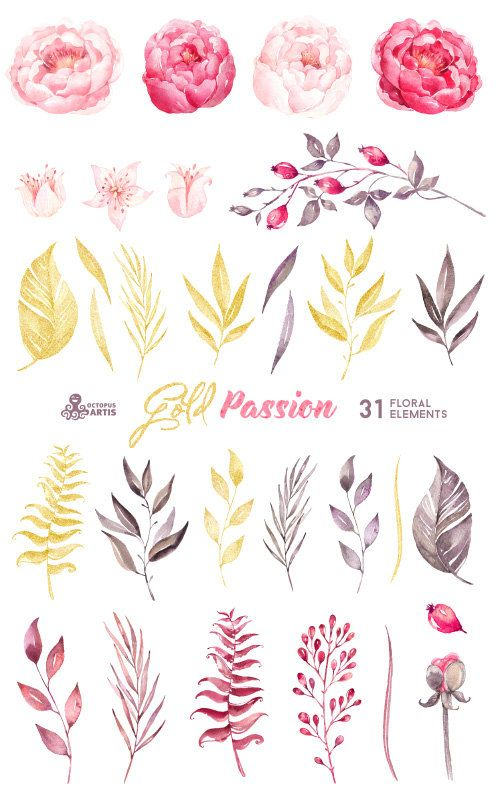 Gold Passion: 31 Floral Elements, watercolor hand painted clipart, peonies…