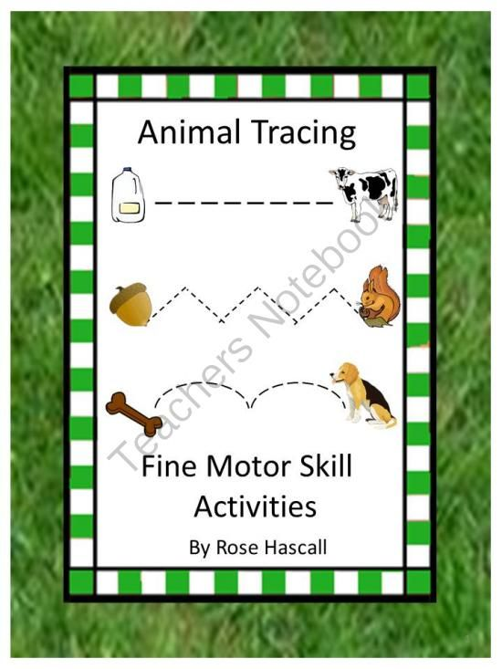 Animal Tracing Fine Motor Skill Activities Pk K Special