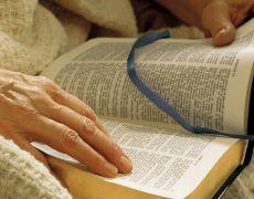 Tania Rubim en Español: Como leer la Biblia
