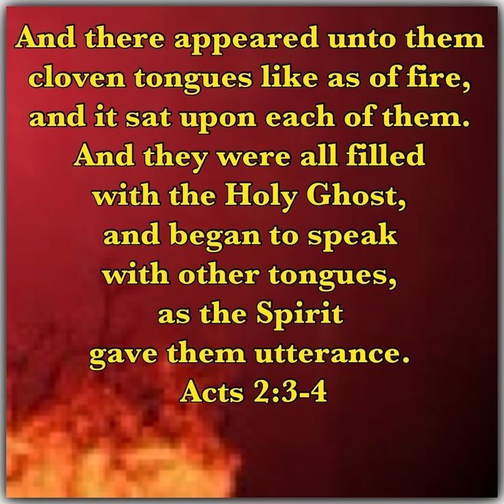 Pin by Susan Sujatha on Our Catholic Church, Loving Her, Fighting for Her, Praying for Her. (A.K.A.  A Catholic: A Way of Life) #1   Bible encouragement, Spirit of truth, Holy ghost